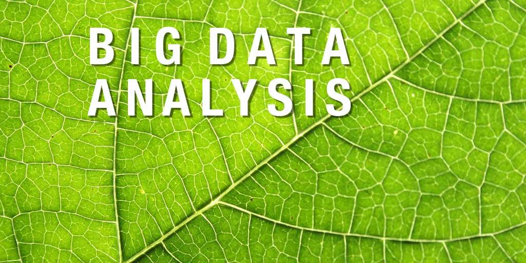 3 trend in crescita: automazione, big data, vocal research
