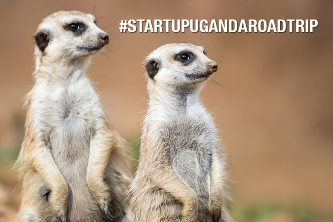 Estate 2017: in Uganda ad incontrare le top startup