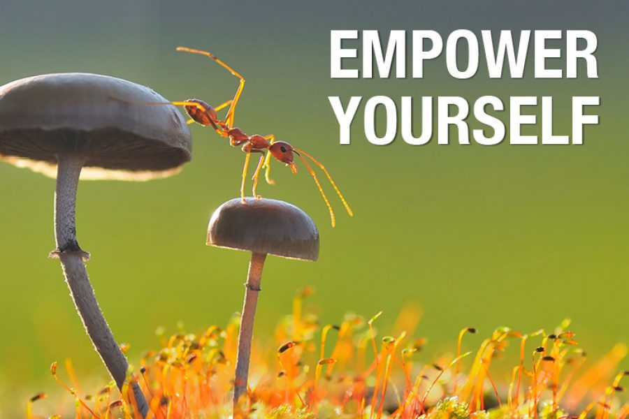 Intelligenza Emotiva e Social Awareness: allena il tuo mindset