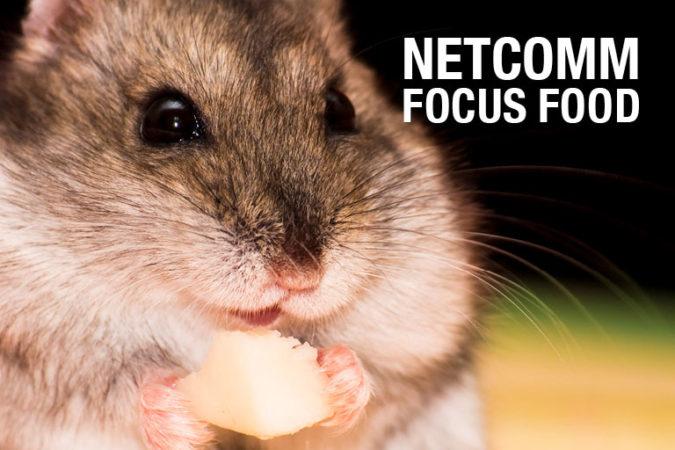 Food & Beverage: i dati del Netcomm Focus Food 2017