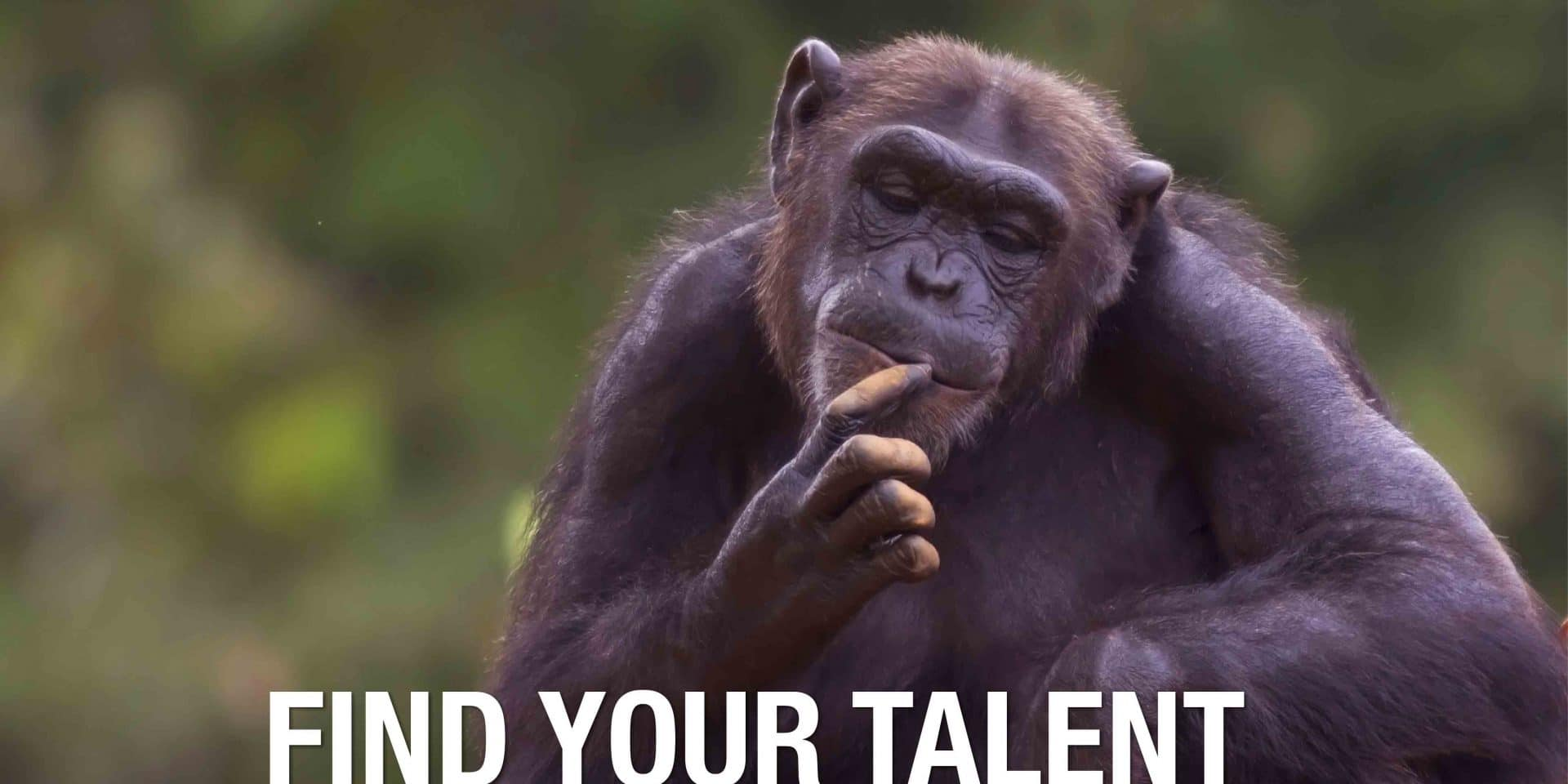Knack: l'applicazione per scoprire il talento giocando