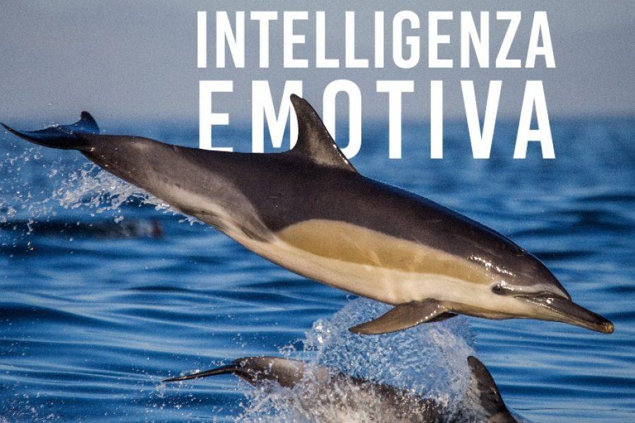 Intelligenza Emotiva: influencer cosa significa e come diventarlo
