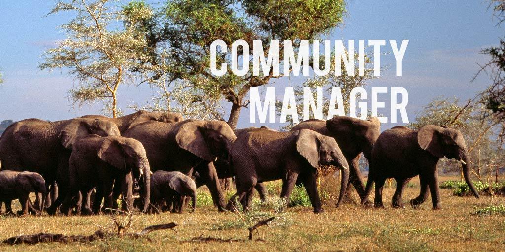 6 consigli per essere un buon Community Manager