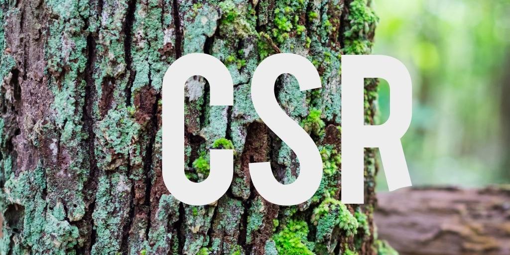 Investiamo in CSR per generare linfa