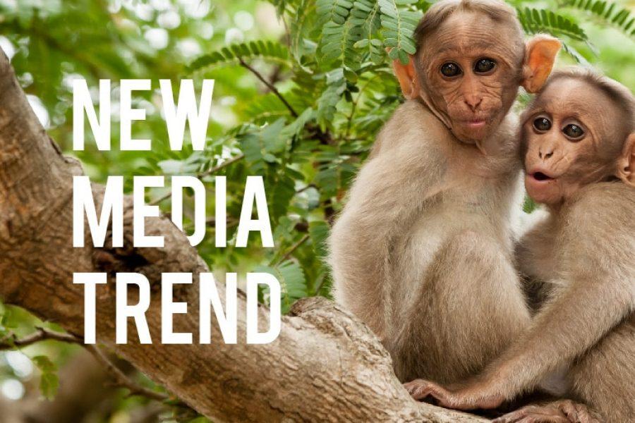 New Media: 5 trend per il 2018