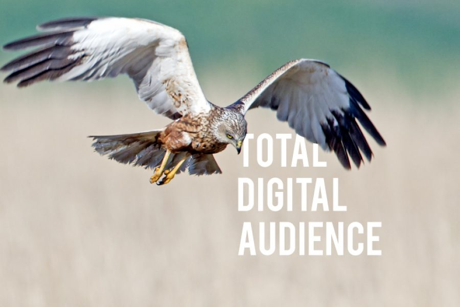 Total Digital Audience 2018: i dati su internet in Italia