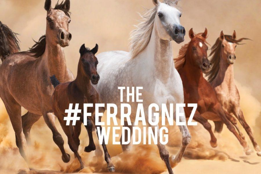 Le 8 cose che non sai sul matrimonio dei #Ferragnez