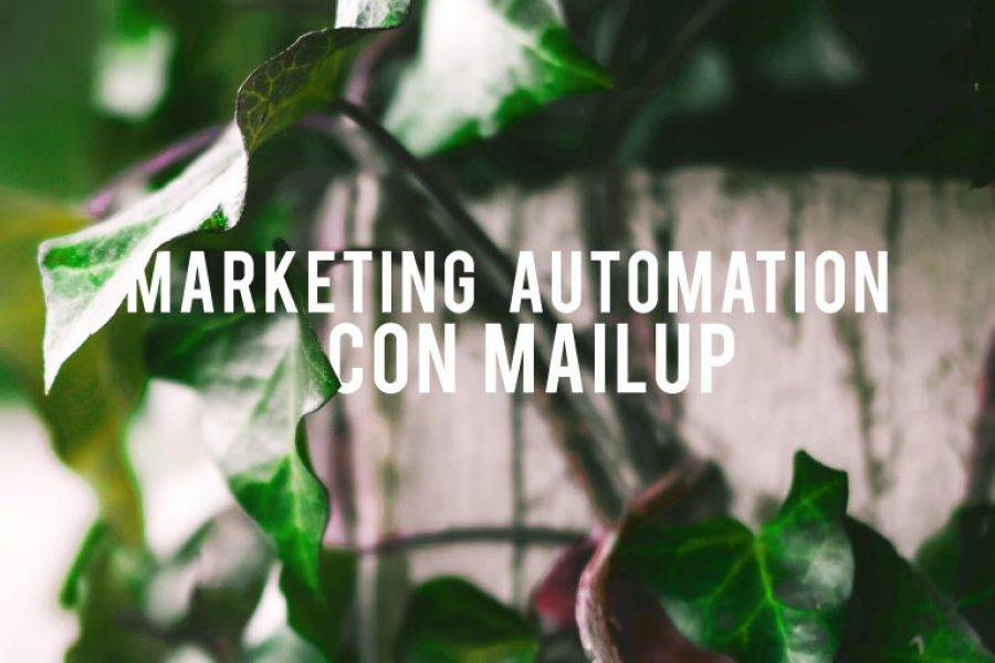 Marketing Automation: la novità di MailUp per Messenger e Telegram