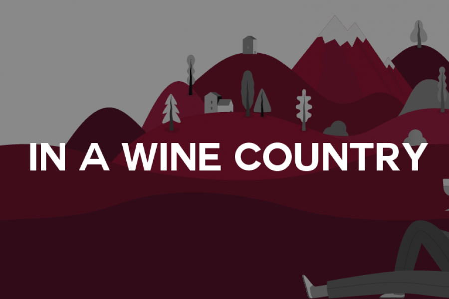 In a Wine Country – L'infografica
